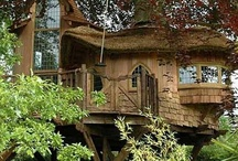 Tree Houses / by Tiare Molinare