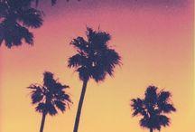 Summer. / by Corinne Jordan