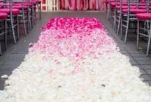 Wedding Ceremony Runner/Aisle Ideas