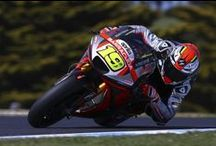 Aprilia MotoGP 2015 - Phillip Island / The best pictures of the 16th weekend of MotoGP. Thanks for your support!