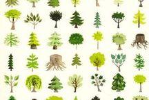wallpaper + pattern