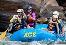 New River / America's best white water.  / by ACE Adventure Resort