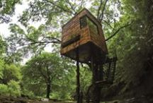 Treehouses / Treehouse design goes out on a limb / by Sierra Magazine