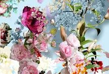 Spring Time...!