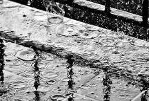 WEATHER • Rainy Day