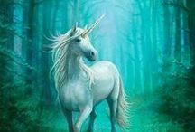 Unicorns...!
