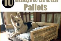 Pallet-able projects / by Stephanie Forbes