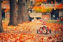 .bike love.