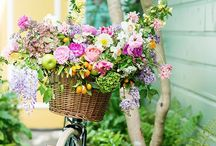 Floral inspirations / Inspired floral designs  / by Lisa M