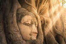 Buddhist Traveler