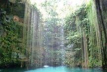 Cenotes / Cenotes, una maravilla natural exclusiva de la Peninsula de Yucatán y la Riviera Maya.Méjico.