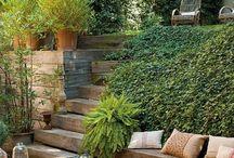jardin, plante et terrasse