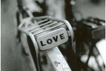 My love of cycling... / by Sascha Roszak