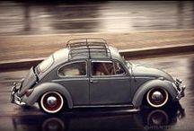 love Bug cars