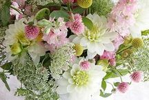 My Interflora Mum / My board is about my mum, and family life, children, pets, getting round the kitchen socialisimg, heaven, now my mum is there, my beautiful daughter who has been amazimg to me in my illness, who is also a fantastic daughter and mum to her two boys , interflora makes smiles