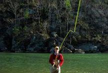 Fishing in Ireland / angling, fishing, fun, salmon, trout, sea, coarse, pike, river