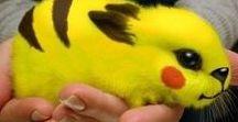 Les pokémon dans la vrai vie !!!