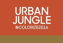 Urban Jungle / An exploration of the positive effects of environmental and biodiversity led us to the Urban Jungle Color Trend. #Colorize2016