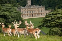 Great places to visit near Bath