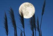 Lunas / Moon/ Lunes