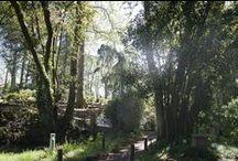 Jardín Botánico Gijón