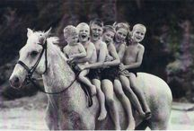 Equestrian <333