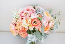 LARRY WALSHE:  TO HOLD / BOUQUET INSPIRATION FOR YOUR SPECIAL DAY