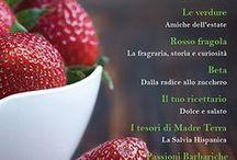 Ricettario Tipico @Magazine / Raccolta digitale di Ricette della cucina italiana