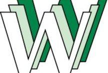 De Webbranche / Media ontwikkeling