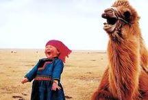 Traveling Mongolia