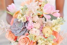WEDDING / Wedding  Rings Decor Dress Venues