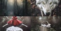 "StoryBoard: Red Riding Hood / ""Red Riding Hood"" is a European fairy tale about a young girl and a Big Bad Wolf..."