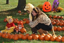 Kids Club Fall Festival Events / by DPTV Kids Club