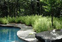 Landscape Architecture - Water