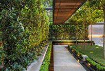 Landscape Architecture- Modern