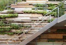 Landscape Architecture - green walls