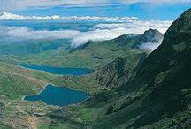 Cymru Am Byth / by Ailsa Lillywhite