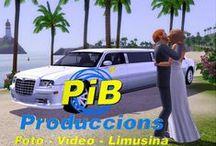 Foto y Vídeo para bodas / Aquí los novios podréis encontrar nuestros packs de reportajes de foto, vídeo, limusina...