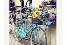 Gorgeous Amsterdam! / Amsterdam travel and fine art photo