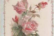 Rose Arbour / Queen of flowers.