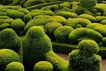 Enviromental Art, Sculpture Gardens, Land Art | Skulpturengärten, LandArt, Natur & Kunst / Topiary Art, Land Art, Mosaiculture, Living Sculptures, Temporary environmental scultures, sculpture gardens