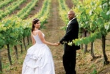 The Vineyard Wedding / by Kathryn | One to Wed