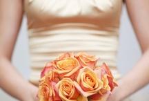 Amber Weddings