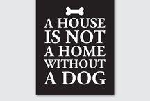 Puppy Dog Tales / by Elizabeth Johnson