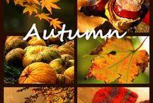 Время года. Осень