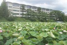 国学館高等学校(秋田県秋田市)