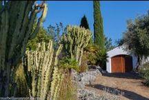 Hermitage and garden in El Calvario Marbella / Gardens of El Calvario in Marbella, Spain