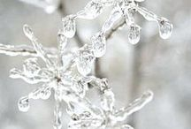 Snow White / Anything White / Anything Snow
