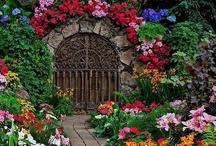 Home ~ Garden