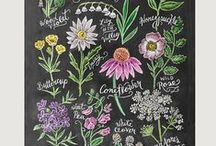 Sweet Chalk Art / by Sweetly Chic
